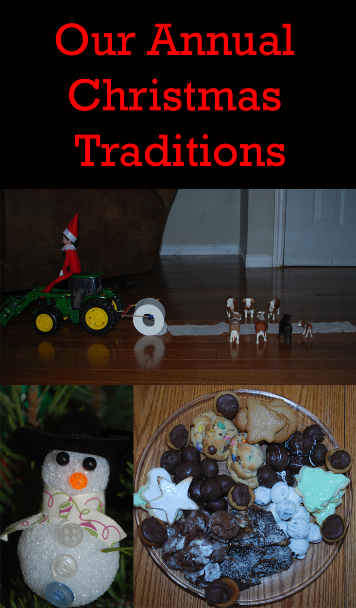 Our Annual Christmas Traditions. Christmas Traditions   Holiday Season   Family Traditions   Christmas   Baking   Ornaments   Christmas Tree   Elf on the Shelf   Christmas Ornaments   Family Time   Christmas Baking