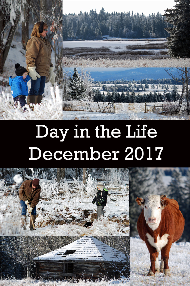 Day in the Life - December 2017. A gorgeous view on a beautiful day! Check out a day in the life for a homeschooling mom and rancher!