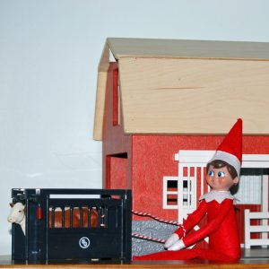 12 Fun and Easy Elf on the Shelf Ideas