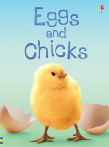 A great book about eggs and chicks. Easter, Easter Books, Usborne Books, Sticker Books, Easter Story, Chicks, Eggs, Bunny