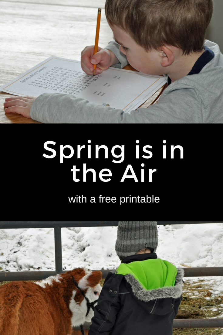 Spring is in the Air! homeschooling, calving season, education.com, worksheets, spring, seasons, change of season, nature, bald eagle