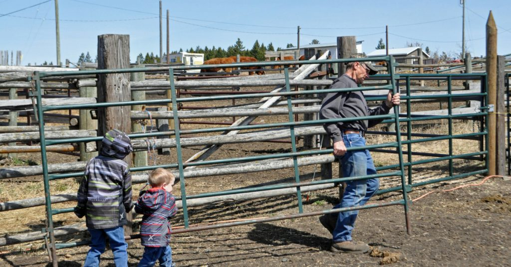 There are lots of opportunities for family time on the ranch.