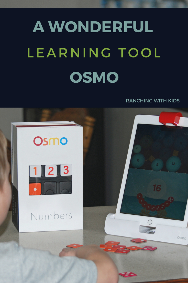 The Omso is a wonderful and fun learning tool for math, spelling and art. #spelling #art #Math #LearningGames
